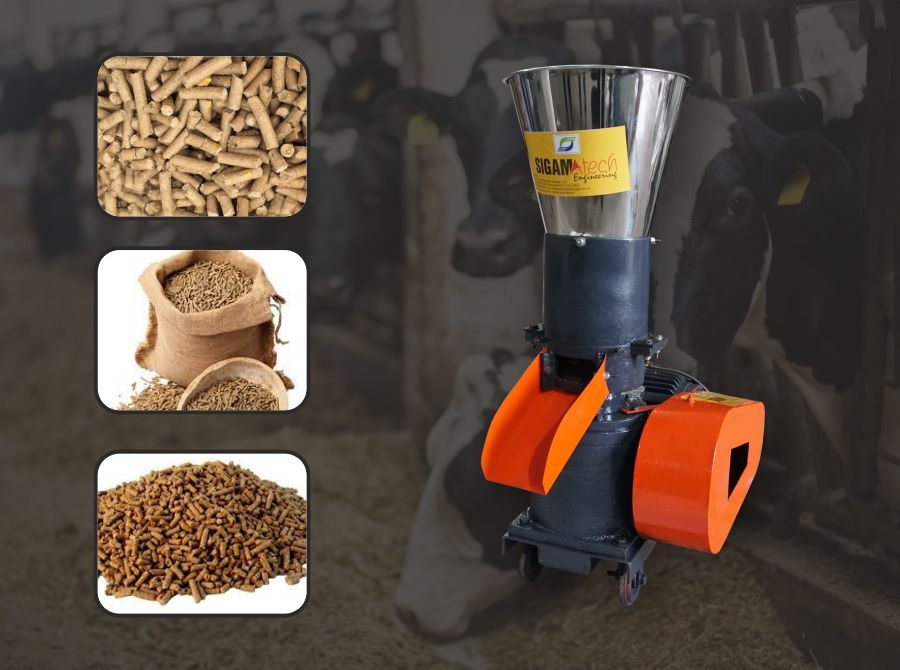 Setup A Cattle Feed Making Business  – Earn High Profit in Low Investment