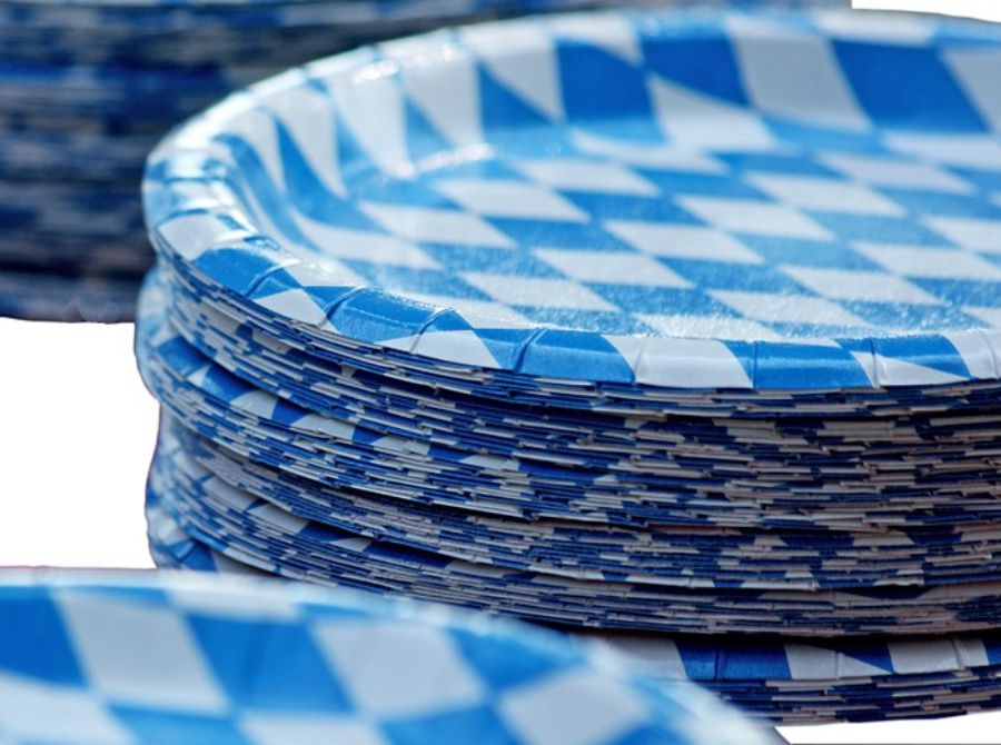 Disposable Paper Plate Business